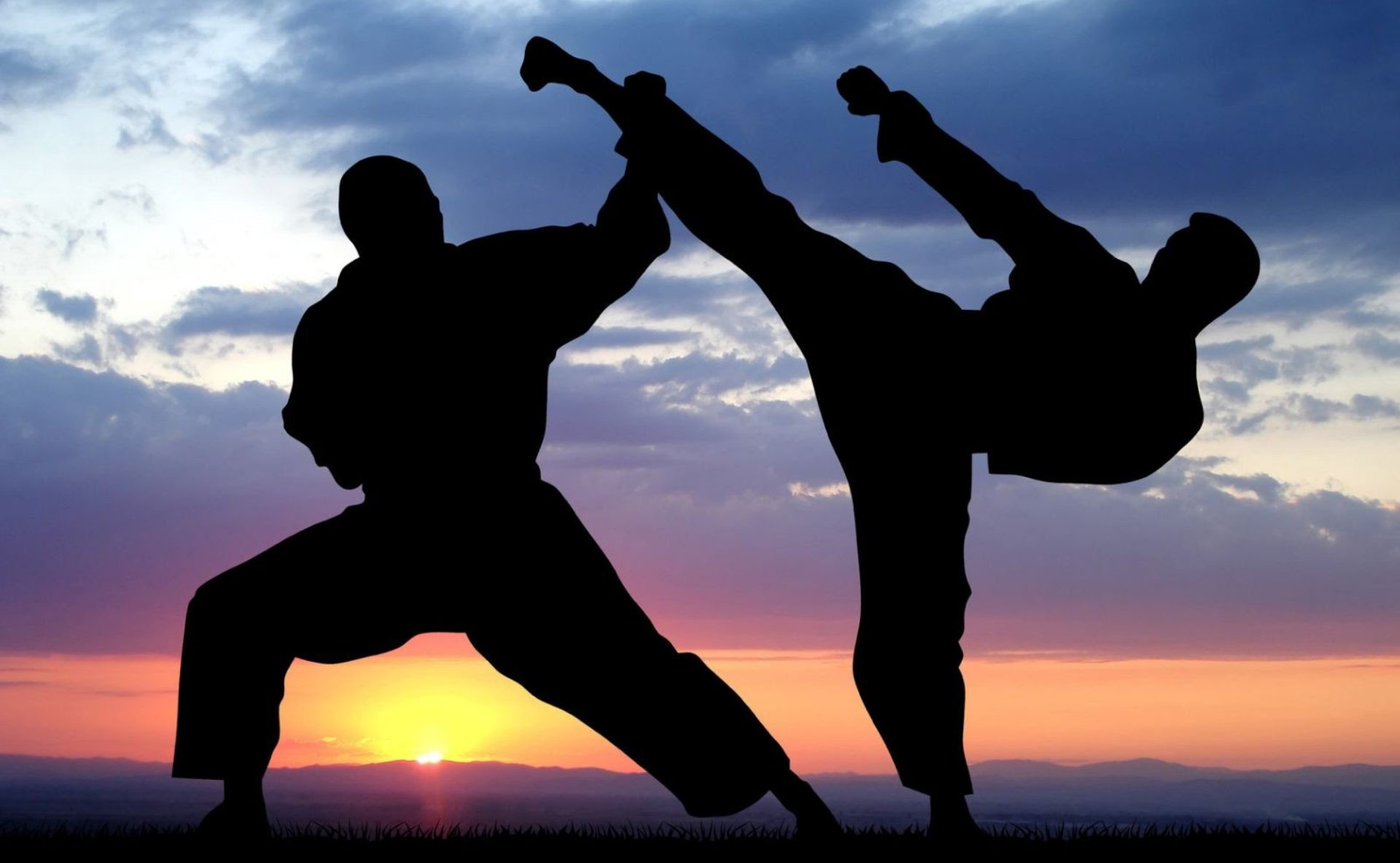 Using Internet for Martial Arts
